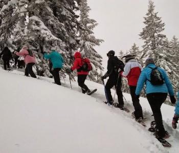 hiking-378614_1920