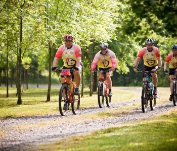 mountain-bikes-766172_1280