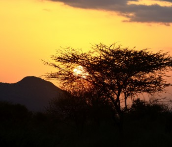 sunset-650618_1920